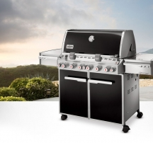 WEBER Summit E-670 GBS, черный 7371075